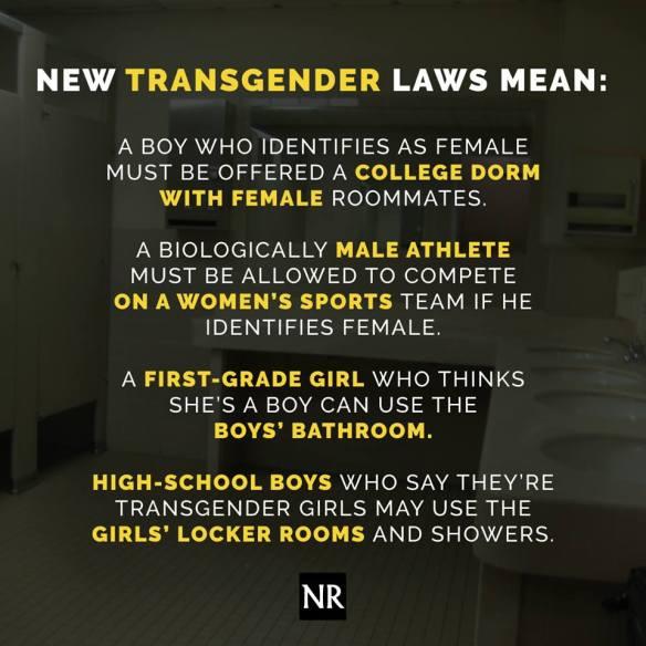 trans laws